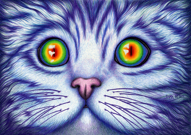 Pop surreal colour pencil drawing of a blue and purple cat with rainbow eyes
